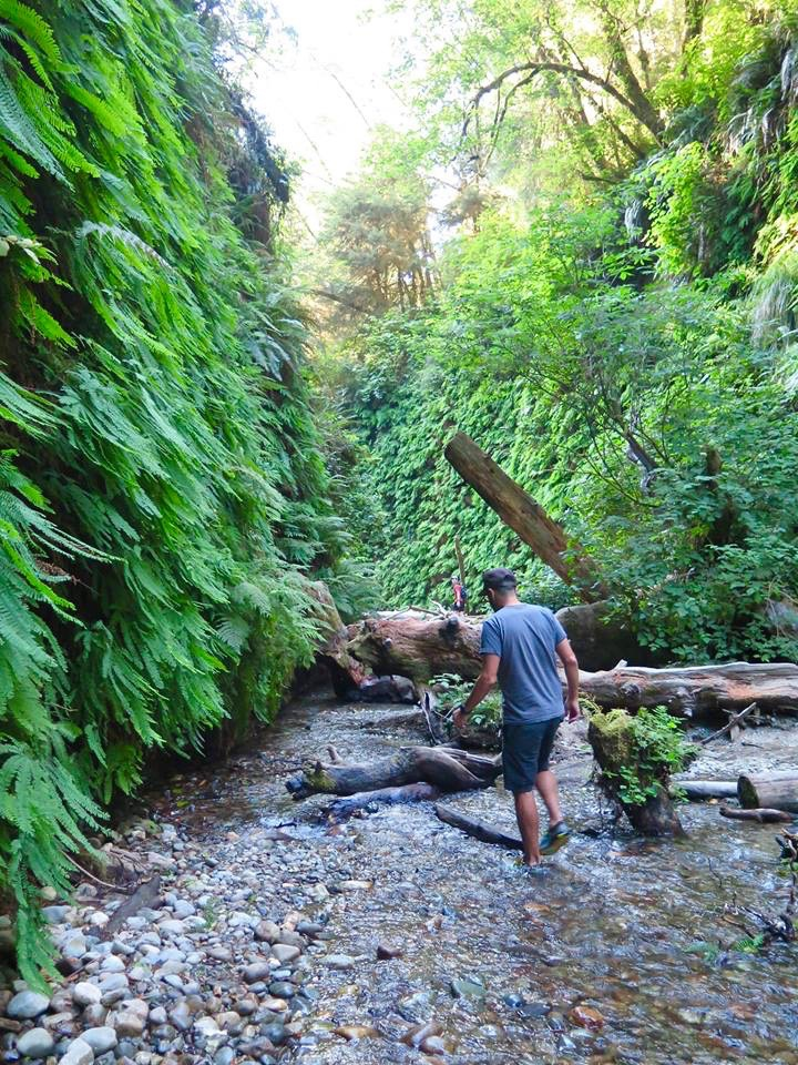Most people use the footbridges and avoid the creek in order to keep their feet dry but it's a much better experience if you hike THROUGH it.