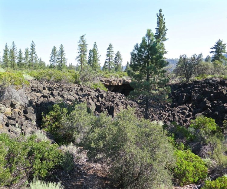The ranger that told us about these two lava tubes had been walking along the PCT a week earlier and noticed two openings. He didn't have time to check them out so we told him we would check them both out and report back to him.