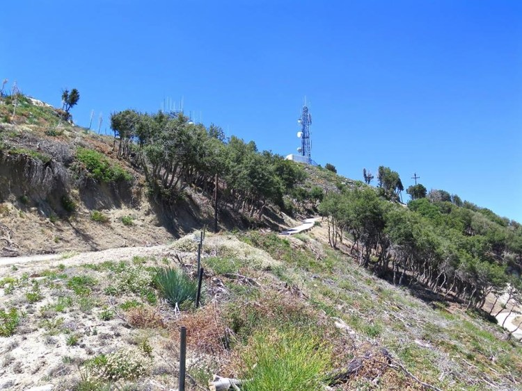 While the missile launching area was located down in this area the barracks, support structures and radar facility was located near the top where the antennas now stand.