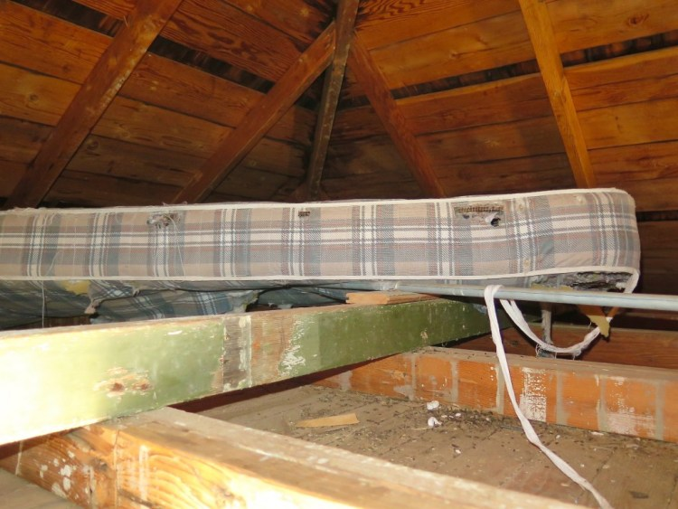 I even found an old mattress up in the attic that looked like it may have been a good place to take a nap if it wasn't for all the mouse droppings everywhere.