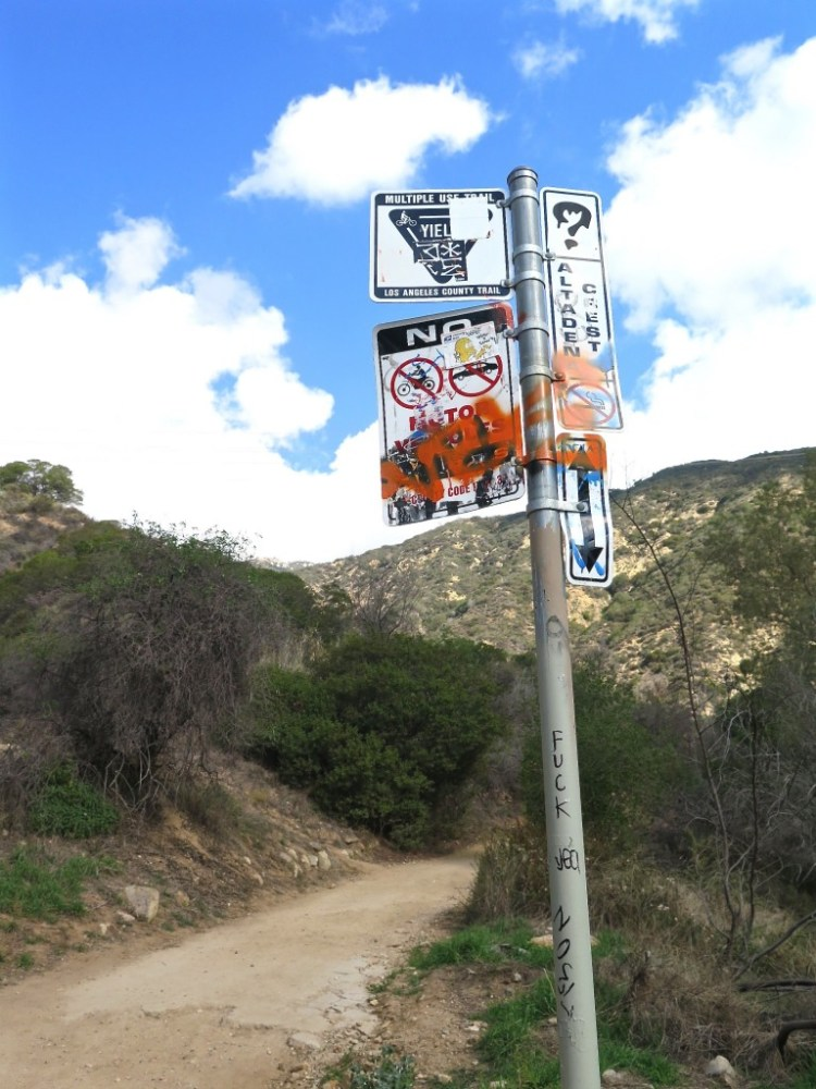 But while thousands of hikers ascend the Echo Mountain Trail every week, only a handful venture into Las Flores Canyon.