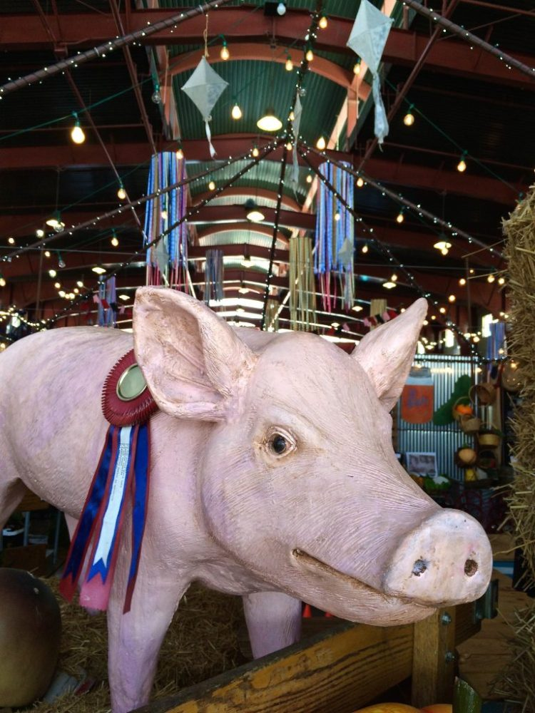 Throughout the years, the OC Fair has established several traditions. One is the recognition of Orange County residents who have bettered the community and become successful in their fields of interest. They are celebrated through blue ribbon prizes and awards.
