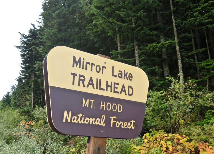 What originally started out as a 12 mile hike got whittled down to two smaller hikes within the Mt. Hood National Forest area.