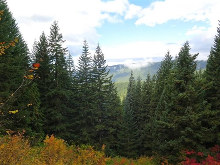 Fall was in full effect in CascadiaLand.