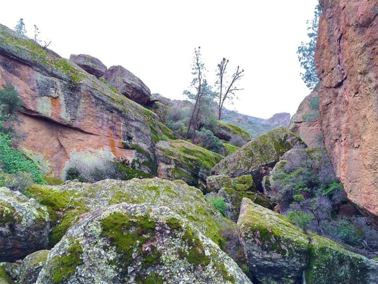 It's was reassuring to know that I was just hiking underneath these ginormous boulders.