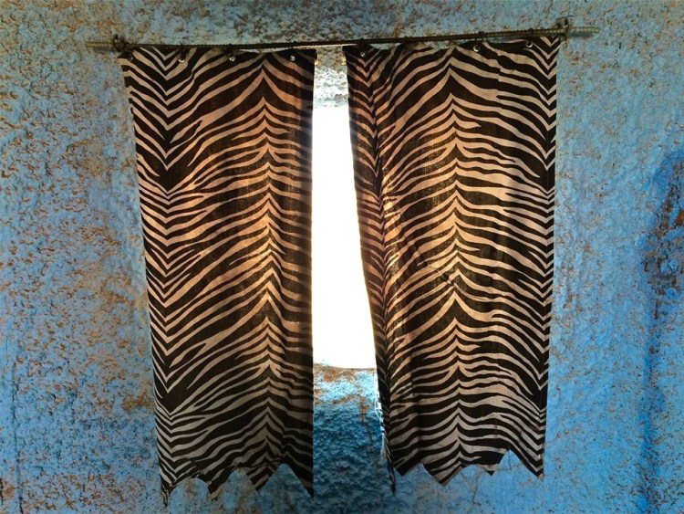 Sexing it up with a little animal print window treatment.