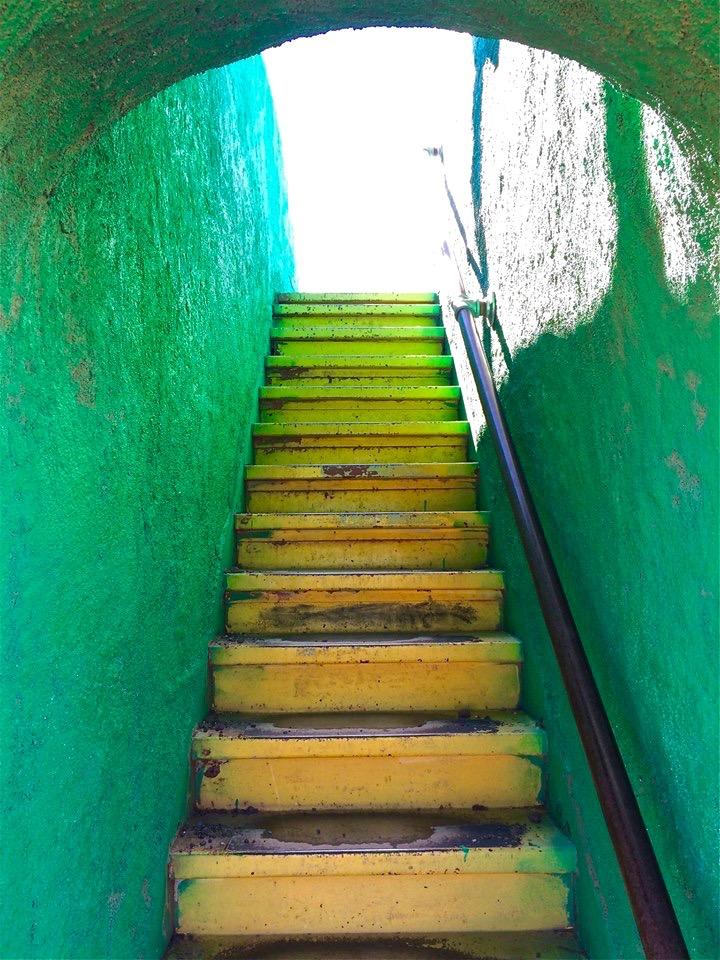 Dino Stairs