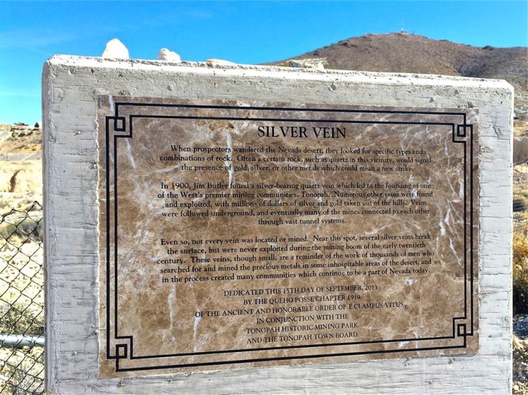 Silver & Veiny