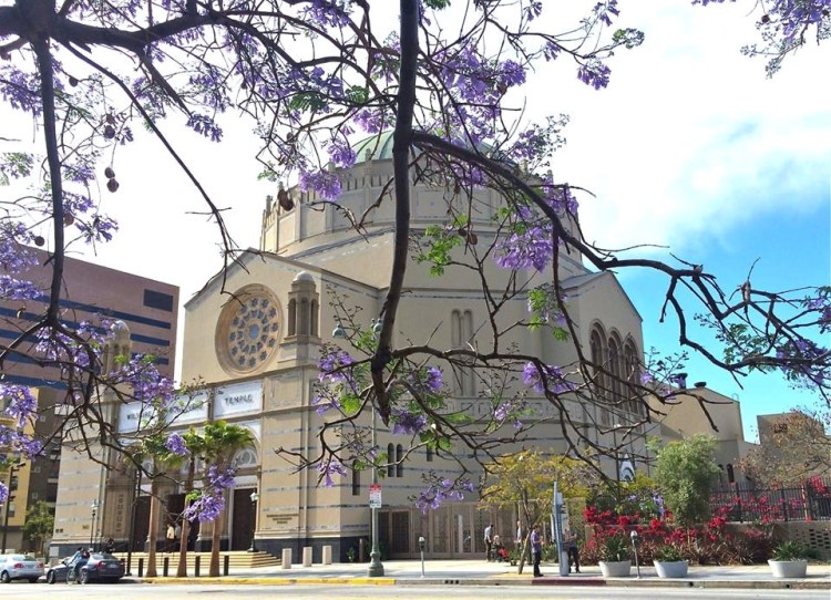 Wilshire Boulevard Temple traces its origins to the first Jewish worship service in Los Angeles, held in 1851. Built in 1929, the Wilshire temple had never had a renovation and fell into disrepair.