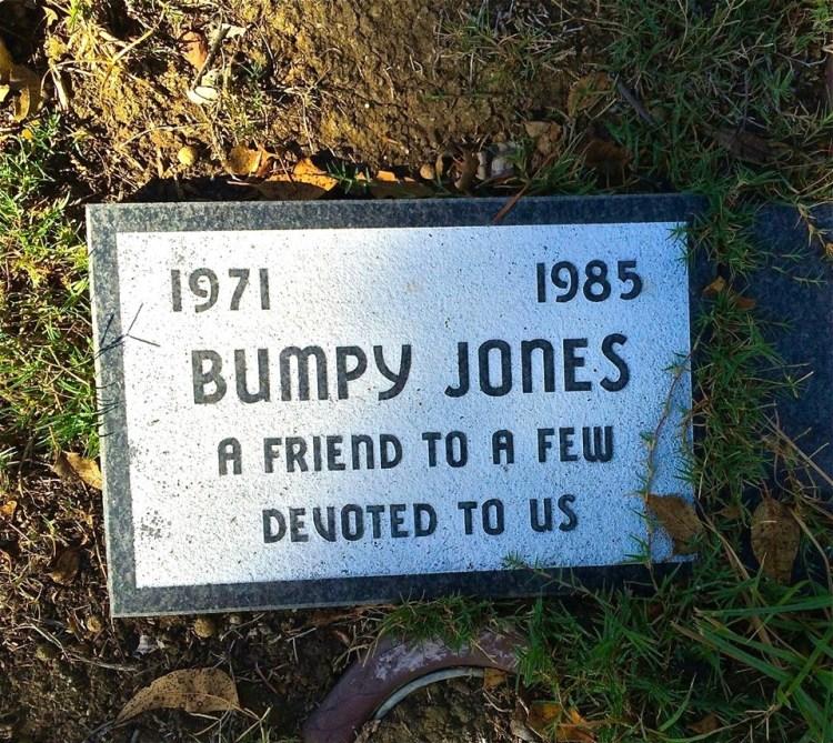 Bridget Jones had nothing on Bumpy.