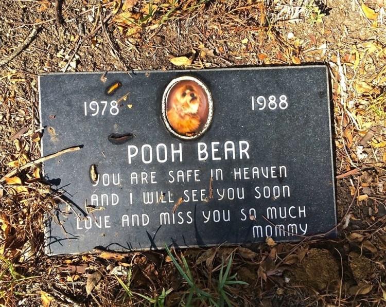 Pooh Bear's here...