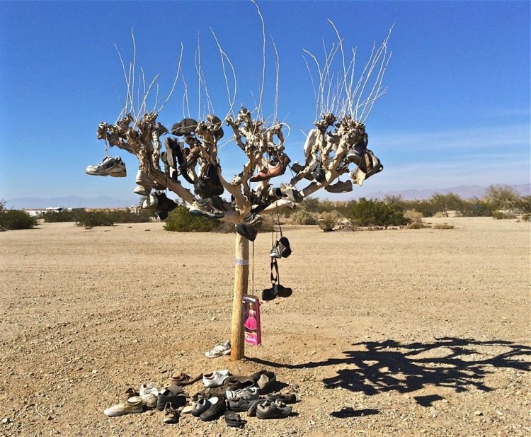 Shoe Tree/Slab City