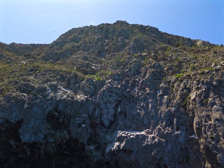 Along with Santa Barbara Island, Anacapa was formed by volcanic eruptions between 19 and 15 million years ago.