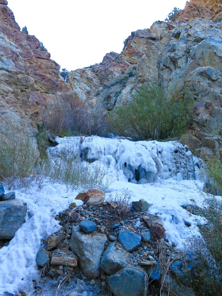 Even though it was November, an early winter had already started to freeze the creek.