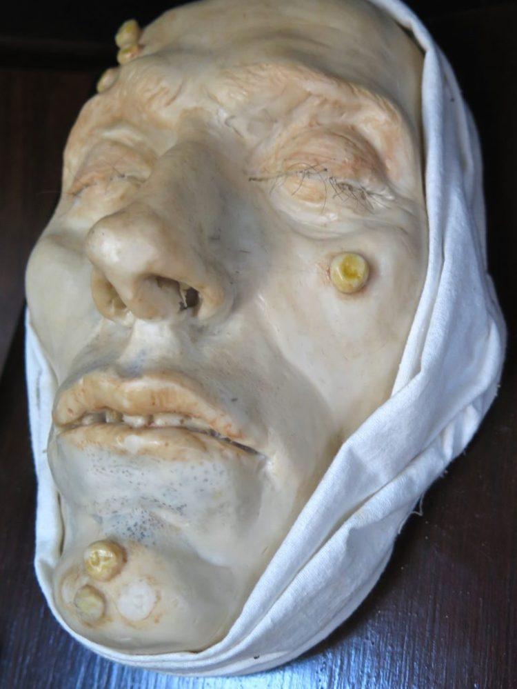 Morbid Anatomy Museum Brooklyn Ny Straynger Ranger
