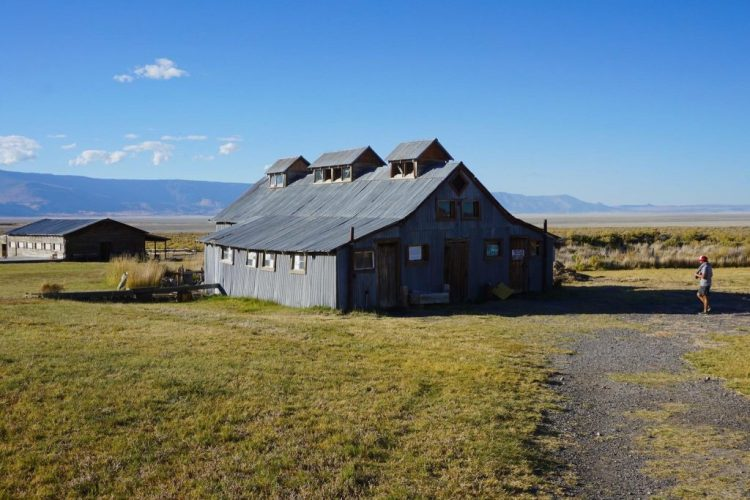 rustic, timber-framed, metal-clad barn