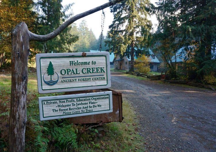 Opal Creek Ancient Forest Center, (a private 501(c)3 non-profit), was founded in 1989 as Friends of Opal Creek to gain protection of the Opal Creek watershed for future generations to study and enjoy, a goal we achieved in 1996 through federal legislation. Opal Creek Ancient Forest Center maintains and stewards Jawbone Flats, a rejuvenated historic mining town in the heart of the 35,000-acre ancient forest watershed of the Opal Creek Wilderness and Scenic Recreation Area