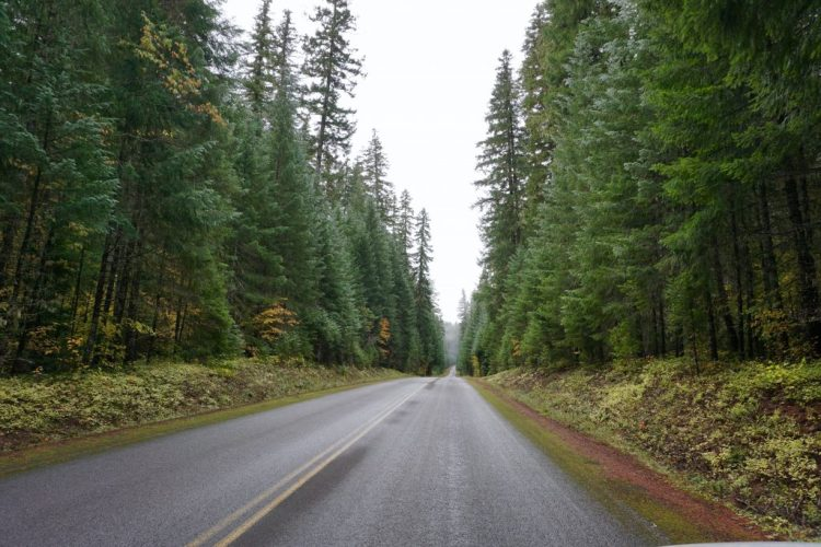 I hope you enjoyed this little taste of our recent road trip through Oregon. Make sure to check back for future expanded posts on each of these amazing places.