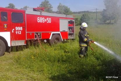 Pożar gałęzi w miejscowości Giebło - 06.06 (3)