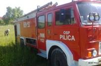 Pożar gałęzi w miejscowości Giebło - 06.06 (4)