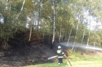 Pożar suchych traw - 3.9.2016 (2)