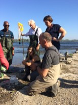 Donald Baird of ECCC examining benthic sample at Remic Rapids (c) Rebecca Spring WWF