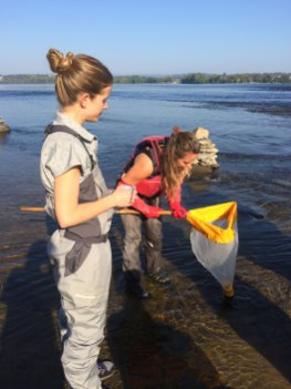 Living Lakes Canada representatives Heather and Raegan examine benthic invertebrates in their net at Remic Rapids (c) Rebecca SpringWWF