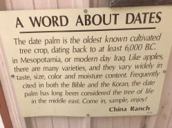 Date sign