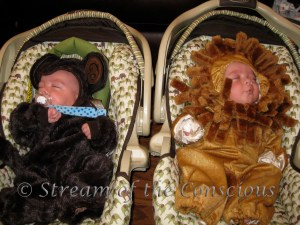 2010 – Wild Aminals (Mommy's Monkey and the Little Lion)