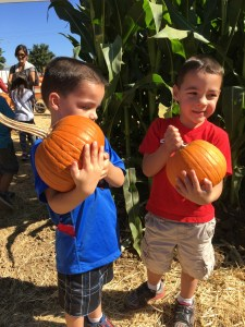 Pumpkin Patch_Brothers_Pumpkins_10-08-14