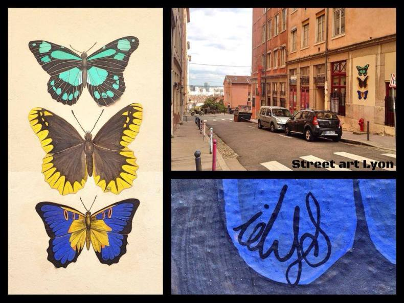idys - butterfly