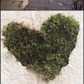 green-coeur