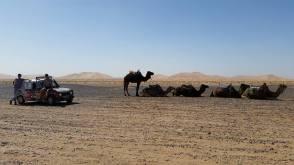 4hell desert