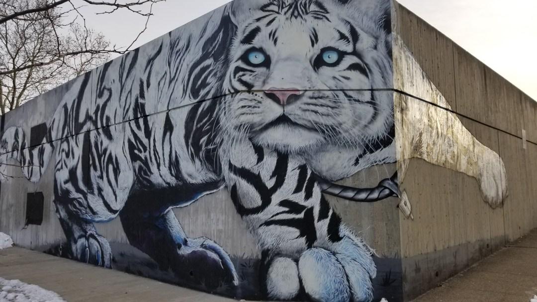 Boston Street Art