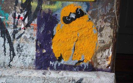 CAZL zeigt einen jungen Vogel in orange