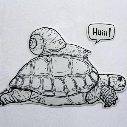 Schildkröte und Schnecke