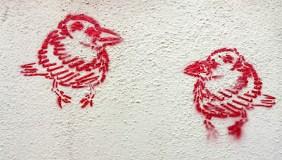rote Vögel