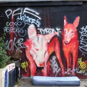zwei Hunde mit Matratze