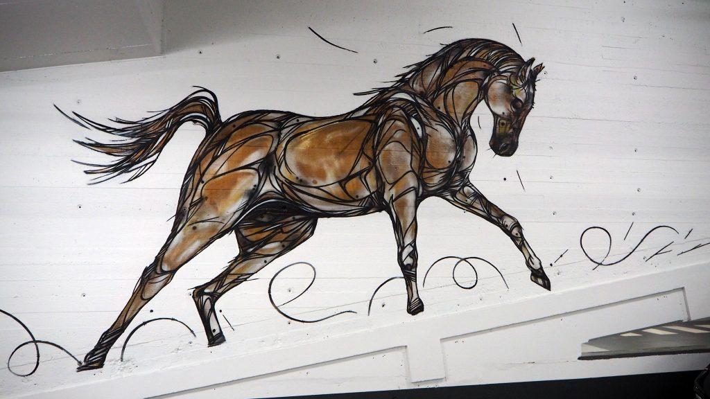 Pferd in Tiefgarage