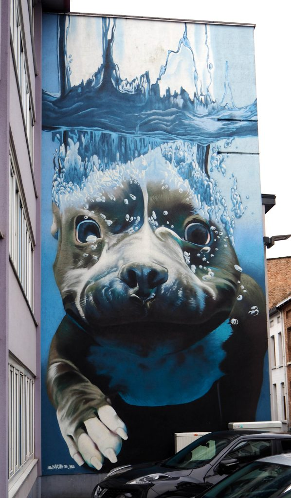 "Mechelen Muurt ""Swimming dog"""