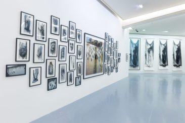 Ernest-Pignon Ernest's exhibition in Nice, France