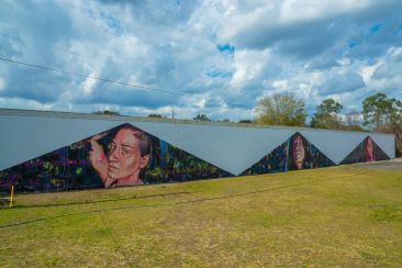 Nicole Holderbaum Paints a Mural in Gainesville, Florida