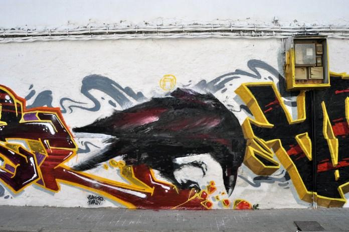 Ravens by Mesa 4