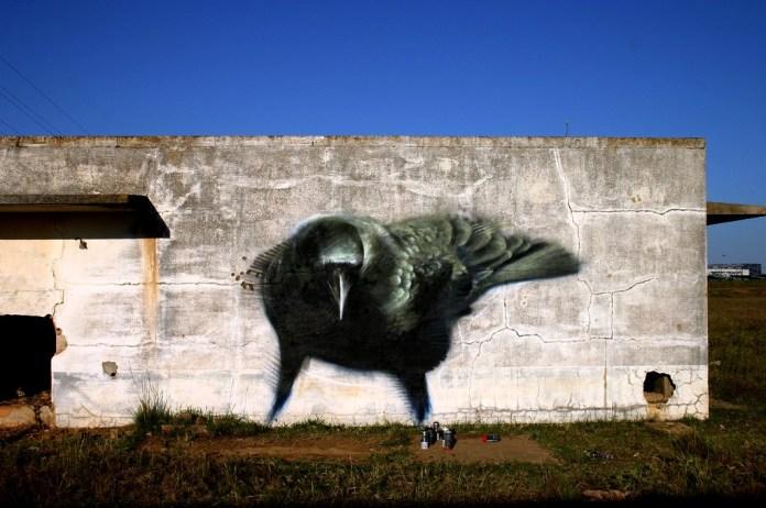 Ravens by Mesa 5