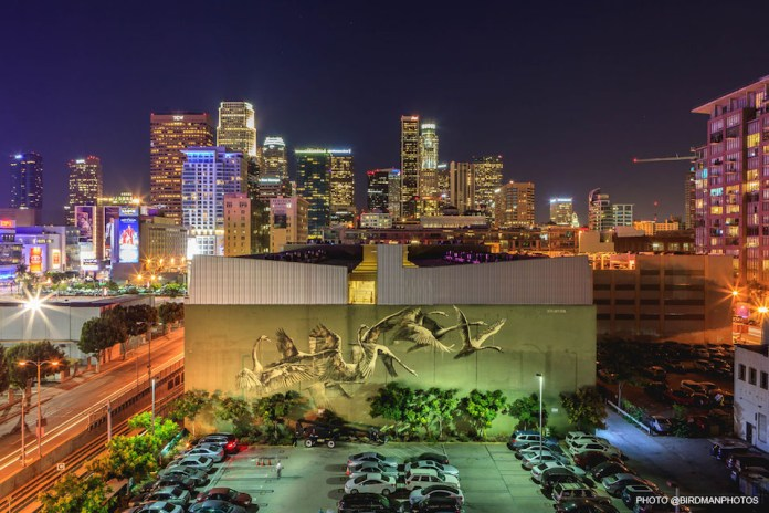 Street Art by Faith 47 in Los Angeles, USA 3