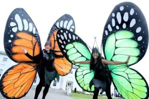 Garden themed entertainers, Best themed entertainment Ireland, garden themed entertainers, street performers ireland