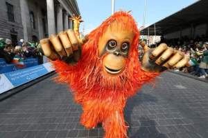 Animal theme entertainers, Orangutan walkabout puppet