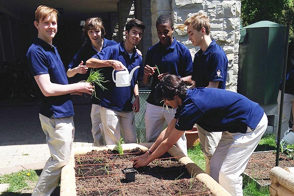 DIGGIN' IT: Students from Royal St. George's College's Environment Club work in one of the three gardens built by them for the club.