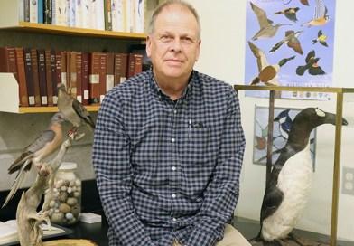 ROM has the last remaining mounts of extinct birds