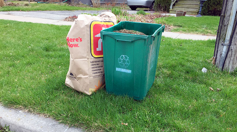 yard waste by the curb